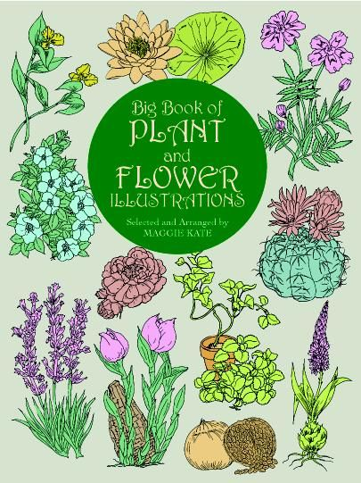 Big Book of Plant and Flower Illustrations, Maggie Kate