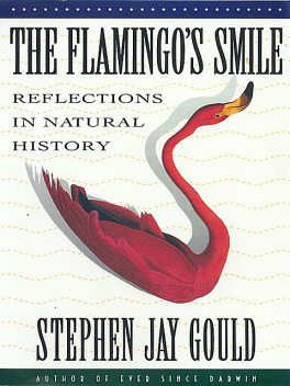 The Flamingo's Smile: Reflections in Natural History, Stephen Jay Gould