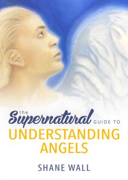 The Supernatural Guide to Understanding Angels, Shane Wall