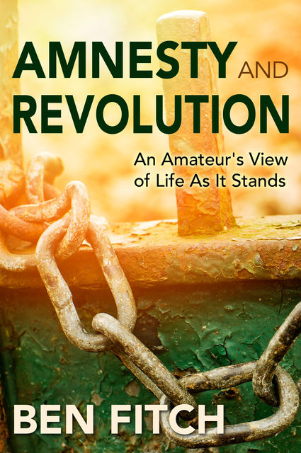 Amnesty and Revolution: An Amateur's View of Life As It Stands, Ben Fitch