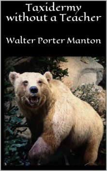 Taxidermy without a Teacher, Walter Porter Manton