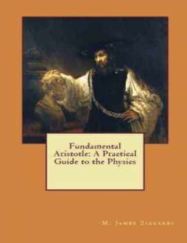 Fundamental Aristotle: A Practical Guide to the Physics, M.James Ziccardi