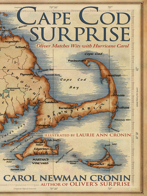 Cape Cod Surprise, Carol Newman Cronin