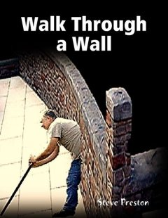 Walk Through a Wall, Steve Preston