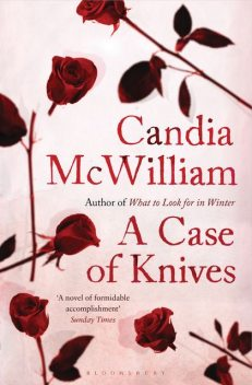A Case of Knives, Candia McWilliam
