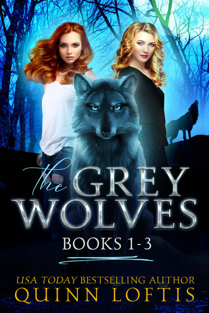 The Grey Wolves Series Collection Books 1–3, Quinn Loftis