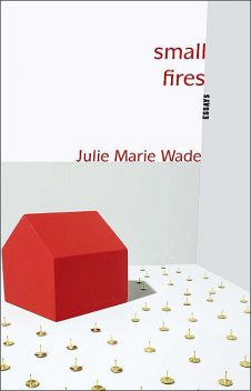 Small Fires, Julie Marie Wade