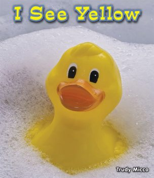 I See Yellow, Trudy Micco