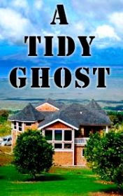 A tidy ghost, Peter Viney