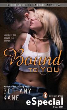 Bound to You: A One Night of Passion Novella, Beth Kery