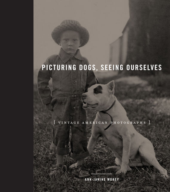 Picturing Dogs, Seeing Ourselves, Ann-Janine Morey