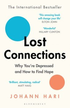 Lost Connections, Johann Hari