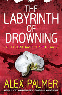 The Labyrinth of Drowning, Alex Palmer
