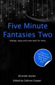 Five Minute Fantasies 2, Gwen Masters, Shanna Germain, Jim Baker, Jeremy Edwards, Alex de Kok, J. Carron, Kitti Bernetti, Landon Dixon, Phoebe Grafton, Stephen Albrow, Roger Frank Selby, Mary Borsellino, Frances Jones, Richard Terry, Ralph Greco Jr, Susan Placido, Elizabeth Coldwe