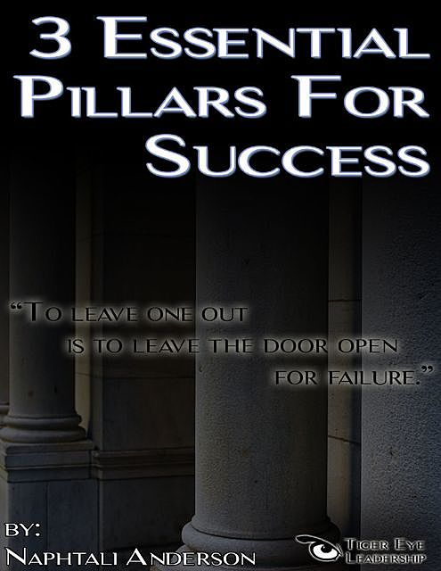3 Essential Pillars for Success, Naphtali Anderson