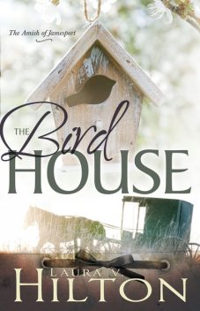 The Birdhouse, Laura Hilton