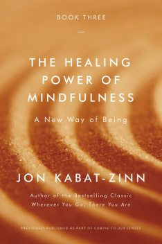 The Healing Power of Mindfulness, Jon Kabat-Zinn