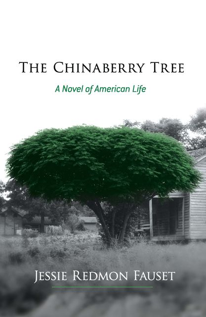 The Chinaberry Tree, Jessie Redmon Fauset
