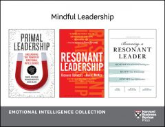 Mindful Leadership: Emotional Intelligence Collection (4 Books), Daniel Goleman, Harvard Business Review, Annie McKee, Fran Johnston, Richard Boyatzis