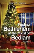 Finding Bethlehem in the Midst of Bedlam Leader Guide, James Moore, Joseph Crowe