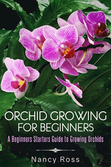 Orchid Growing for Beginners, Nancy Ross