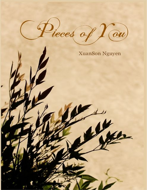 Pieces of You, XuanSon Nguyen