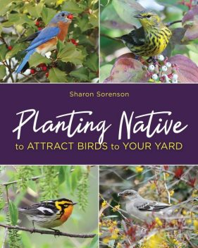 Planting Native to Attract Birds to Your Yard, Sharon Sorenson