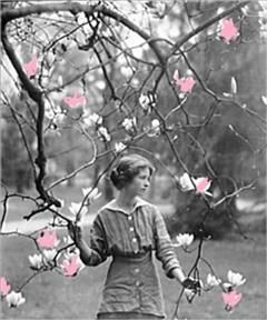 Renascence & Other Poems, Edna St.Vincent Millay