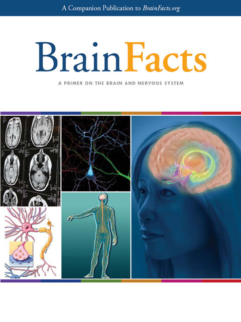 BrainFacts: A Primer on the Brain and Nervous System,
