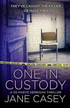 One in Custody, Jane Casey