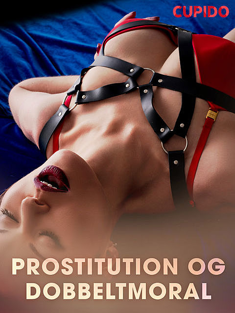 Prostitution og dobbeltmoral, Others Cupido
