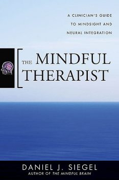 The Mindful Therapist: A Clinician's Guide to Mindsight and Neural Integration (Norton Series on Interpersonal Neurobiology), Daniel Siegel