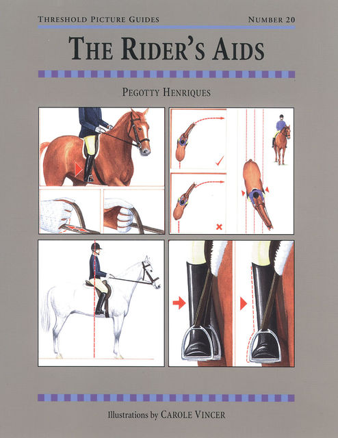 The RIDER'S AIDS, PEGOTTY HENRIQUES