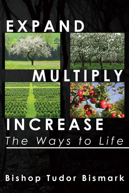 Expand, Multiply, Increase: The Ways to Life, Tudor Bismark