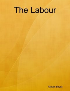 The Labour, Steven Bayes