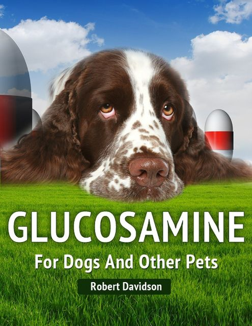 Glucosamine for Dogs and Other Pets, Robert Davidson