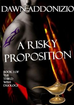 A Risky Proposition, Book 1 of The Third Wish Duology, Dawn Addonizio