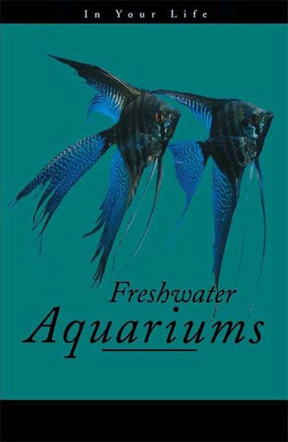 Freshwater Aquariums in Your Life,