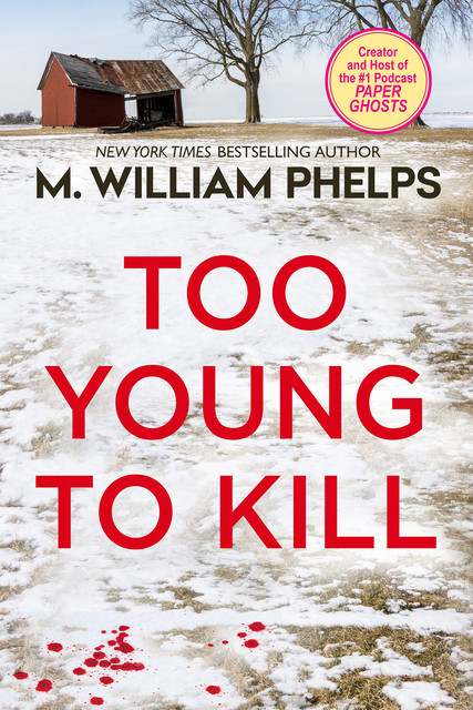 Too Young to Kill, M. William Phelps