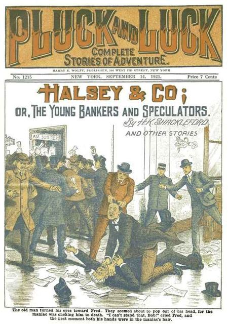 Halsey & Co. / or, The Young Bankers and Speculators, H.K.Shackleford