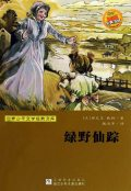The Wonderful Wizard of Oz (Chinese Edition), L. Frank Baum