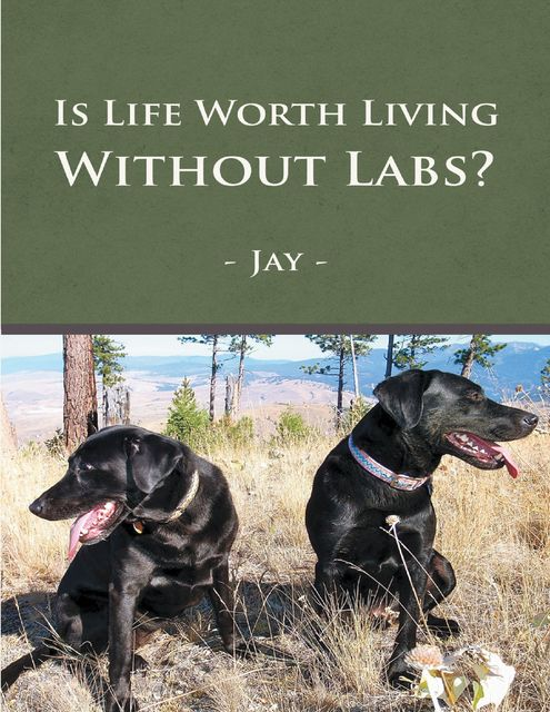 Is Life Worth Living Without Labs?, Jay