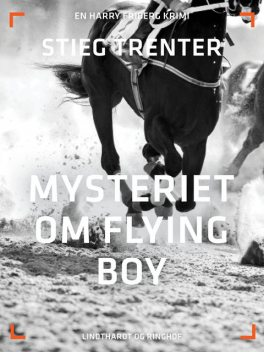 Mysteriet om Flying Boy, Stieg Trenter