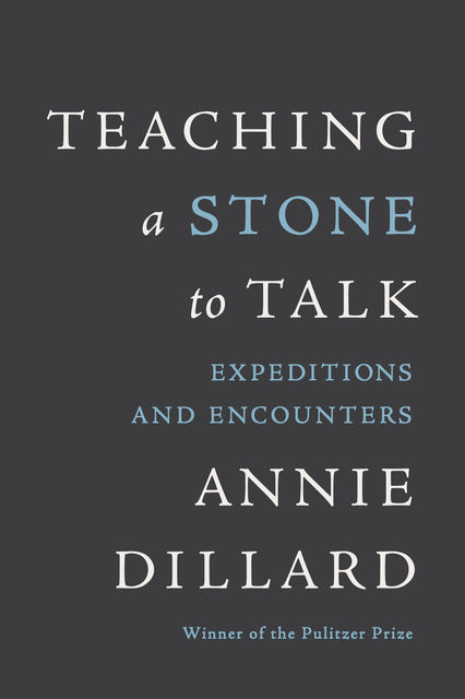 Teaching a Stone to Talk, Annie Dillard