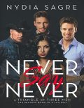 Never Say Never: A Triangle of Three Men the Second Book In a Trilogy, Nydia Sagre