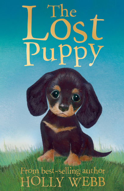 The Lost Puppy, Holly Webb