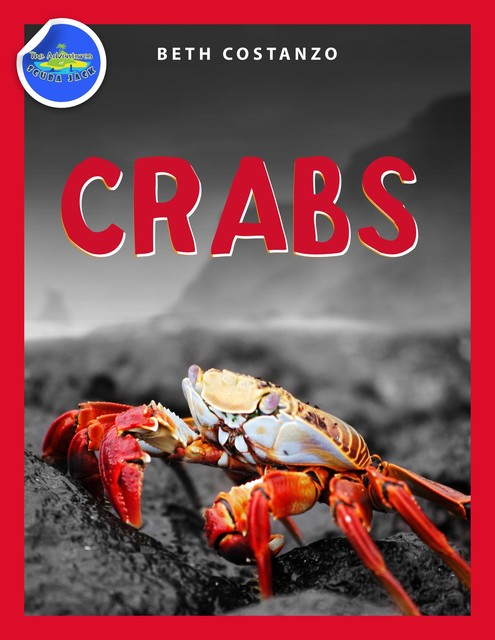 Crab Activity Workbook for Kids ages 4–8, Beth Costanzo