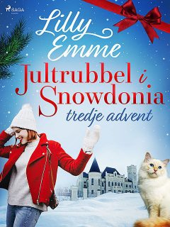 Jultrubbel i Snowdonia: tredje advent, Lilly Emme