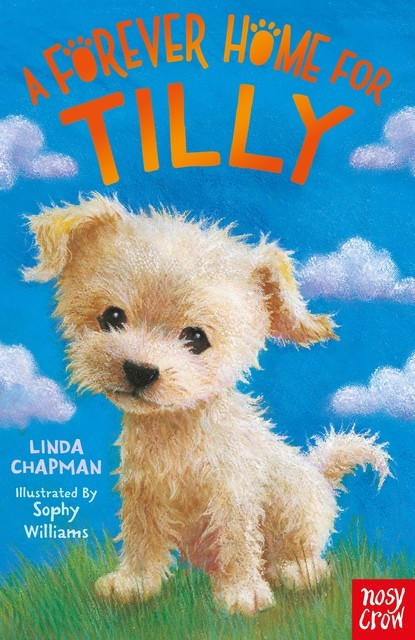 A Forever Home for Tilly, Linda Chapman