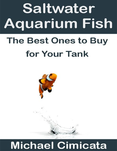 Saltwater Aquarium Fish: The Best Ones to Buy for Your Tank, Michael Cimicata